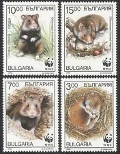 Bulgaria 1994 WWF/Hamster/Rodents/Animals/Nature/Wildlife/Pets 4v set (s471)