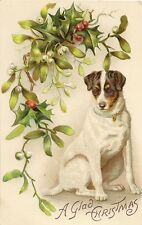 CARTE POSTALE POST CARD FANTAISIE GAUFREE DOG CHIEN A GLAD CHRISTMAS