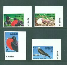 Antigua 1994 WWF Birds set of 4 IMPERFS Mangificent Frigates  MNH