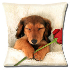 "SLEEPY LONG HAIR TAN BROWN DACHSHUND PUPPY PHOTO ROSE 16"" Pillow Cushion Cover"
