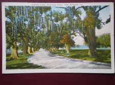 POSTCARD USA LOUISIANA NEW ORLEANS - 1937 LOVERS LANE AUDUBON PARK