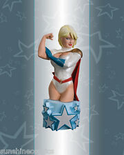 Power Girl Bust Women of the DC Universe Series 3 Amanda Conner 742/5000 SEALED