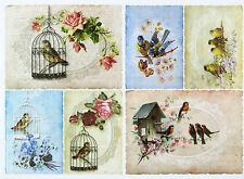A/4 Classic Decoupage Paper Scrapbook Sheet Vintage Birds