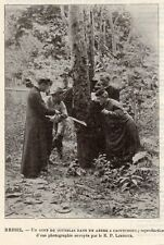 BRESIL PRETRE DONNE COUP DE COUTELAS DANS ARBRE CAOUTCHOUC IMAGE 1908 OLD  PRINT