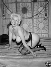 Vintage 1960s Barbara Martin Stockings & huge breasts 8 x 10 Photograph
