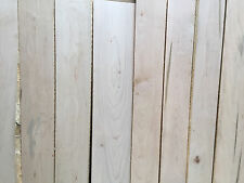 9 AD Ambrosia Maple Beetle Striped Wormy Maple Craft Table Top Book Case Boards