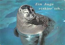 B98675 seal sceau germany   animals animaux