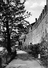 Cartolina - Postcard - Torino - Valentino pittoresco - anni '50