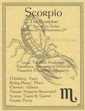 SCORPIO POSTER  A4 SIZE Wicca Pagan Witch  Goth BOOK OF SHADOWS