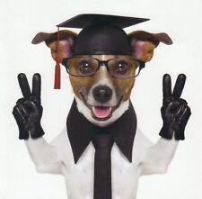 Klappkarte de luxe: Jack Russel - Terrier Chico als Professor