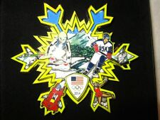 "FAZZINO 2010 & 2014 OLYMPIC PINS ""THUNDERBIRD"" AND ""GO USA"" WORLDWIDE SHIPPING!"