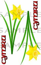 Welsh Daffodil 180 kit CYMRU Car Sticker Bike Van Truck Tool Box 4x4 Off Road RC