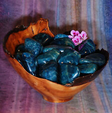 1 APATITE Tumbled Stone - Consciously Sourced Healing Crystals