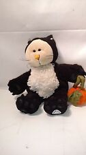 Starbucks Bearista Plush Bear w/ Cat Costume w/ pumpkin Halloween 2005