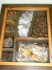 Vintage Wooden Shadow Box 6 Compartments with Seeds Stones Glass Front