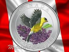 2010 GOLDFINCH - BIRDS OF CANADA SERIES - BEAUTIFUL COLORED 25 CENT COIN