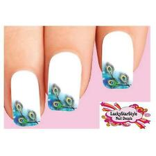 Waterslide Feather Nail Decals Set of 10 - Peacock Feathers Tips