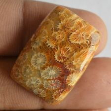 100% Real Fossil Coral Cabochon Gemstone,Genuine Coral Jewelry Gemstone#1664