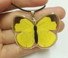 Insect Pendant Yellow Butterfly Necklace Pendant Real Insect Charm NG