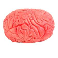 Halloween Haunted House HUMAN BRAIN Organ Body Part Horror Trick Gift Prop
