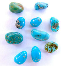 RARE 10 Campo Frio Mexico Turquoise Natural Nugget LOT specimen Rock Lapidary NR