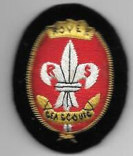 Rare Rover sea scout hat badge, vintage.