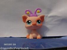 Littlest Pet Shop Pink Pig with Butterfly Antennae and Blue Eyes #622 New Loose
