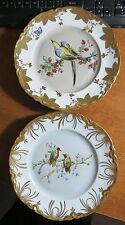 """2 Hutschenreuther Gelb HEAVY Gilded Bird plates 9 7/8"""" MINT!!"""