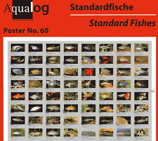 """AQUALOG Poster """"Fishes for Beginners"""", LAMINATED"""