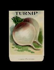 1910's TURNIP LITHO SEED PACKET ~L@@K~ MUST SEE-WOW!!!