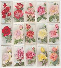 Complete Set of 50 Vintage ROSE Painting Cards from 1926