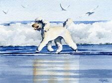 Poodle At Beach Painting 11 X 14 Art Print Signed Djr