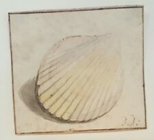 Signed Original 18th.Century Watercolour Painting Dutch 1700s Sea Shell Dirksen