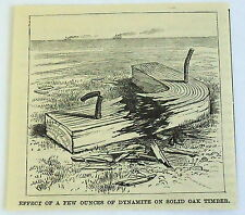 1885 magazine engraving~ EFFECT OF A FEW OUNCES OF DYNAMITE ON SOLID OAK TIMBER