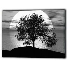 Large Black & White Tree Canvas Framed Panel Sky Water Clouds - Wall Art Prints