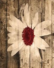 Rustic Sunflower Red Brown, Country Farmhouse Floral Wall Art Matted Picture