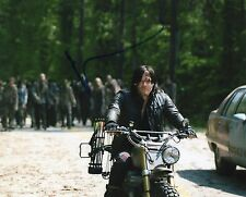 Norman Reedus The Walking Dead Signed 8x10 Photo BSC COA Autograph #2