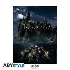 """HARRY POTTER - Collector Artprint """"Hogwarts"""" (50x40)"""