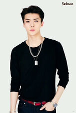 "SEHUN EXO MUSIC POP KOREAN BOY THE POSTER 24""x36"" NEW SIDE WALL SHEET J-4973"