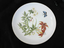 """Shafford Chinese Garden 7 3/4"""" Salad Plate (s)Butterfly Floral Design"""