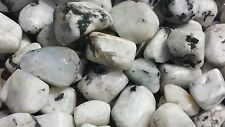 SIX (6) RAINBOW MOONSTONE TUMBLED STONES  MEDIUM/LARGE NATURAL TUMBLE STONES