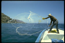 491077 Sardine Fisherman Casting Net Sea Of Cortez Mexico A4 Photo Print