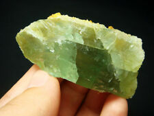 50g Fancy Green FLUORITE Crystal Vug with Yellow Calcite Mineral Specimen