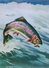 Rainbow Trout, by Walter Weber vintage art