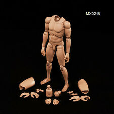 New 1/6 Action Figure Male Body Asian Skin MX02-B In Stock