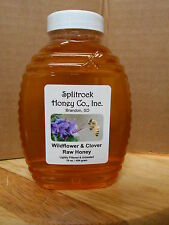 Raw Wildflower & Clover Honey from South Dakota Organic farm 1 lb