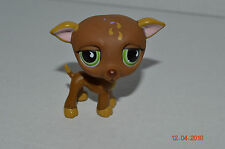 Littlest Pet Shop~#507~Greyhound~Puppy Dog~Brown-Teardrops~Green Teardrop Eyes