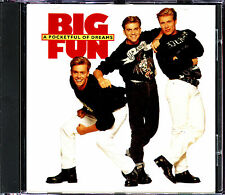 BIG FUN - A POCKETFUL O DREAMS - CD ALBUM 1990  [935]