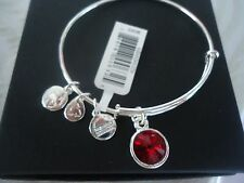 Alex and Ani JANUARY Birthstone GARNET Shiny Silver Charm Bangle NWT Card & Box