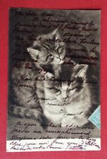 CPA. CHAT et CHATON. 1905. Tons Bruns.